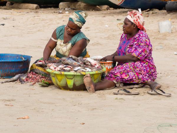 Gambia, Tanji, Fish Market 5/5