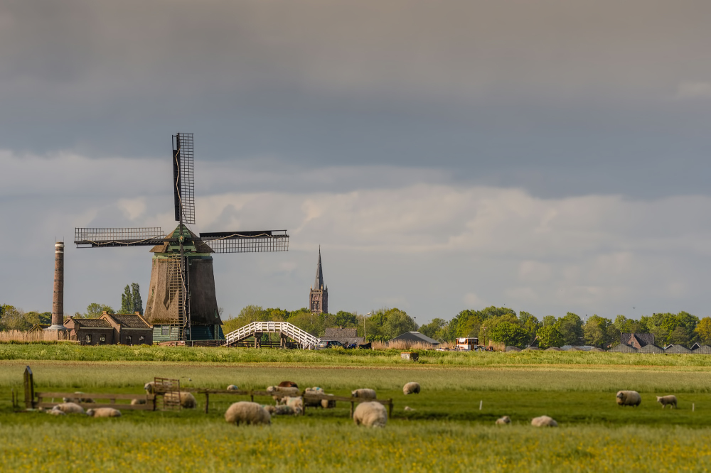 The Netherlands, Berkmeer polder