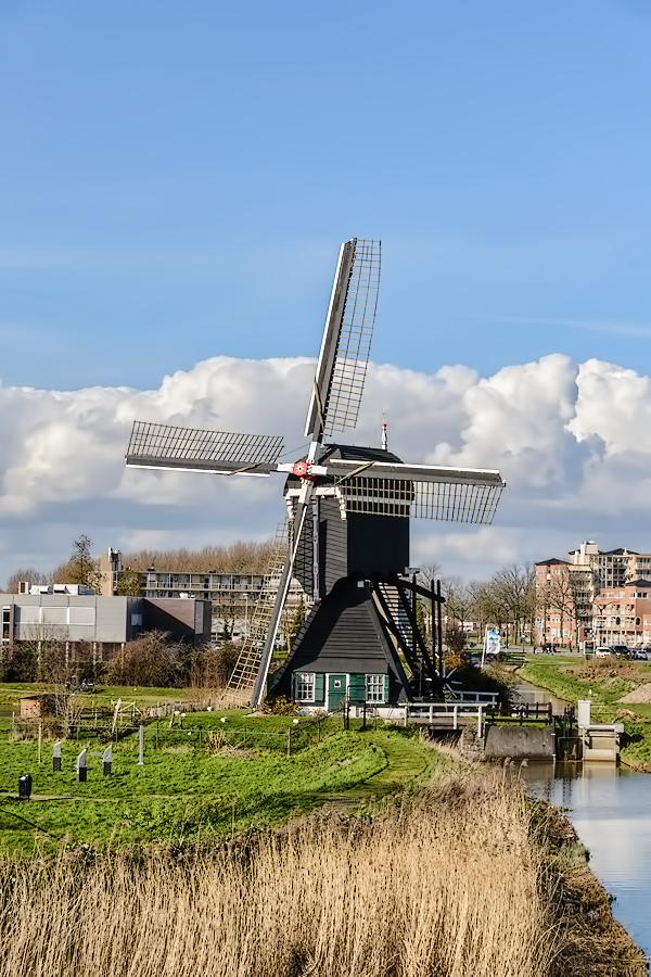 The Netherlands, Leerdam, Molen Ter Leede