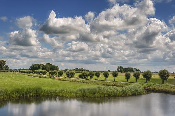 The Netherlands,  Polder Berkmeer