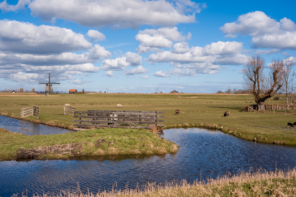 The Netherlands, Grootschermer