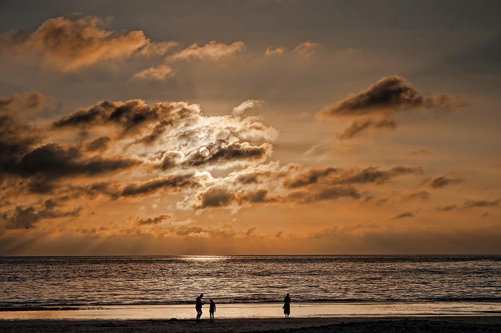 The Netherlands,  Petten, Beach