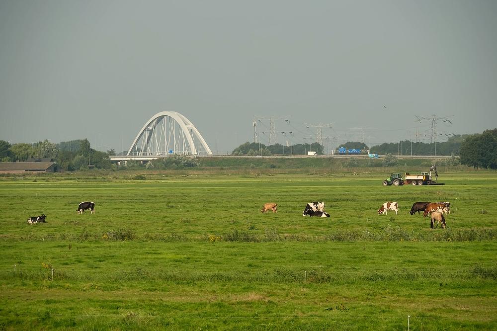 The Netherlands, Muiderberg, Zandhazenbrug
