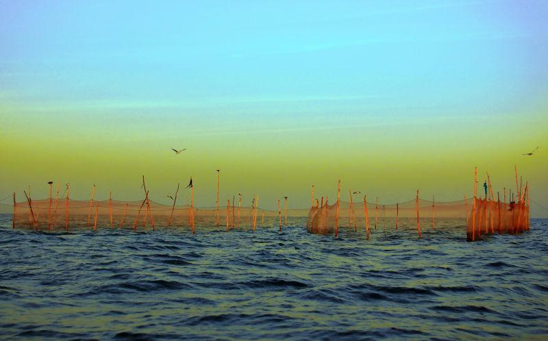 حصار دریا