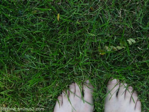 Grass Between My Toes