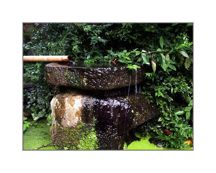 Japanese Garden / 2