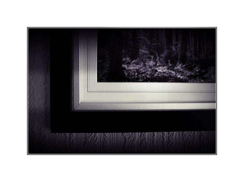 Picture Framed