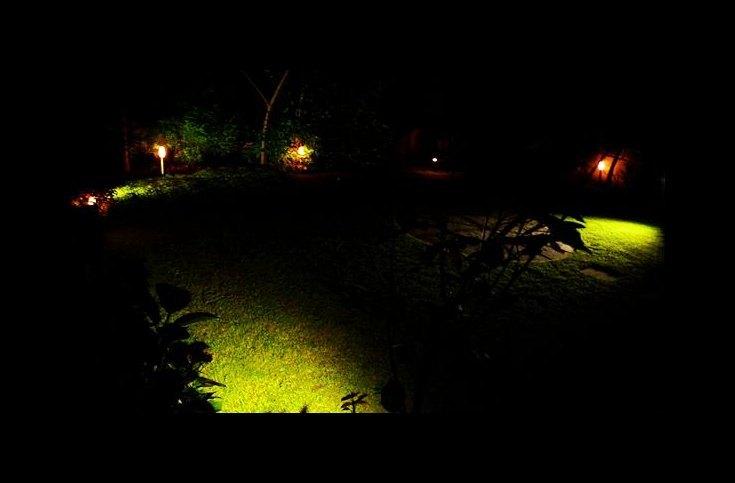 Around the Garden #7