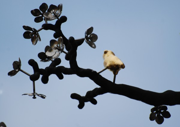 Kultainen lintu