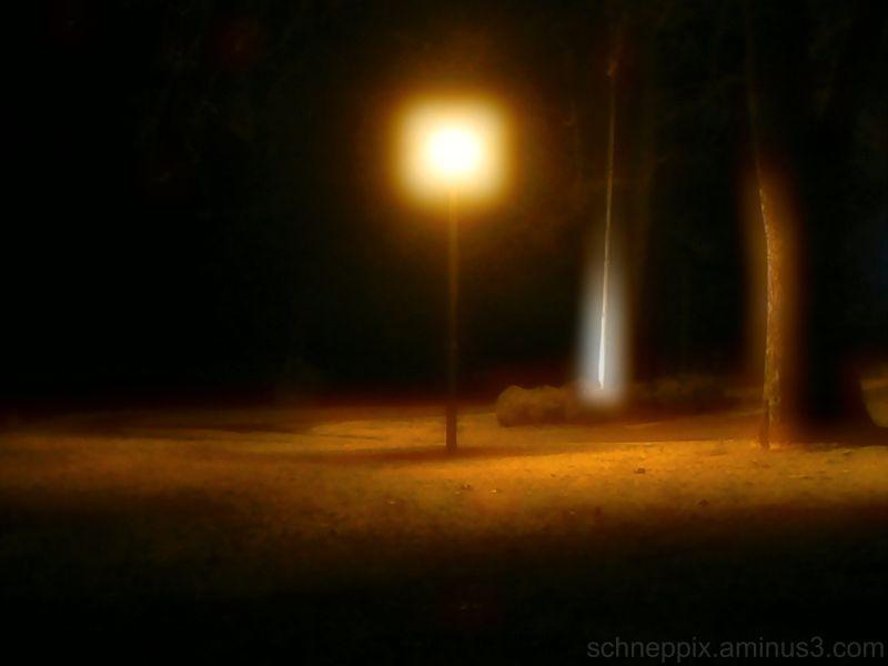 soft lantern glow in the park
