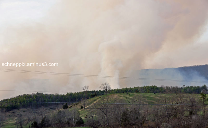 George Washington National Forest-fire