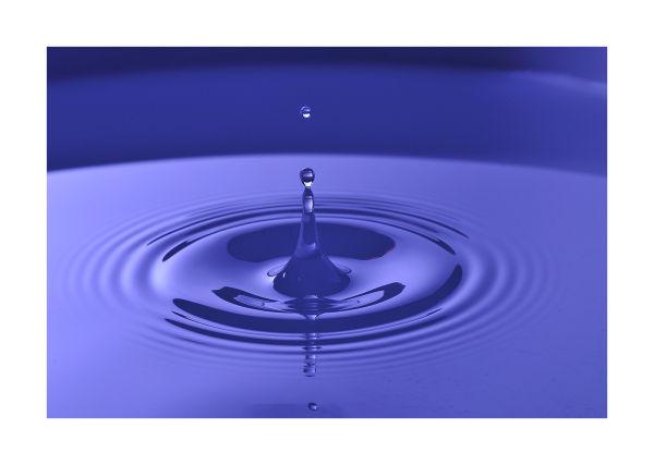 Water drop caught in mid splash