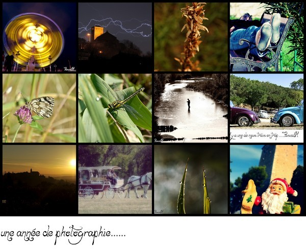 one year of photography