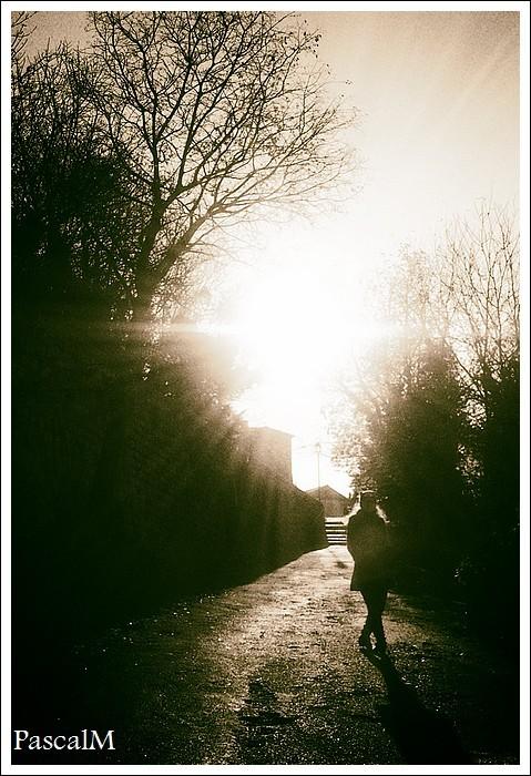 suddenly I saw the sun