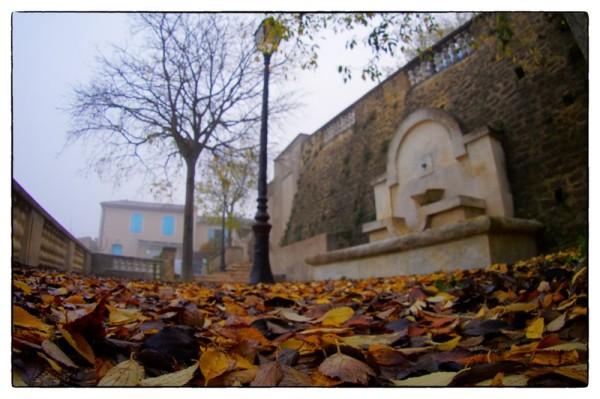 l'automne arrive - 01