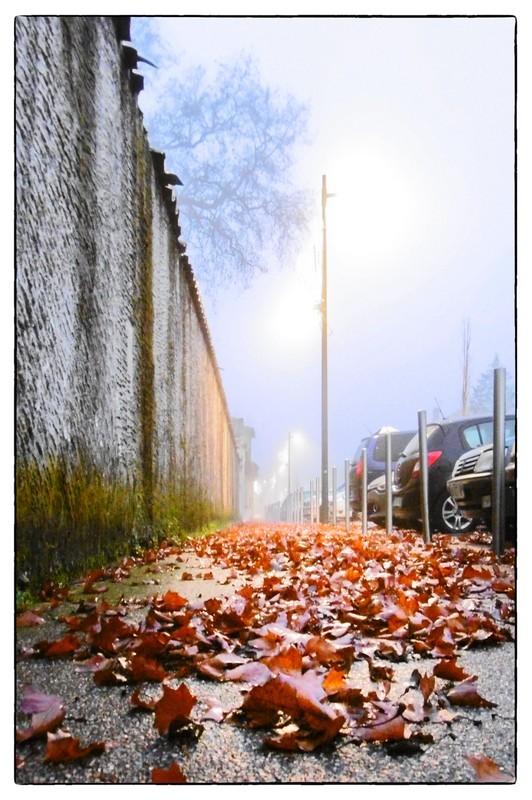 l'automne arrive - 02