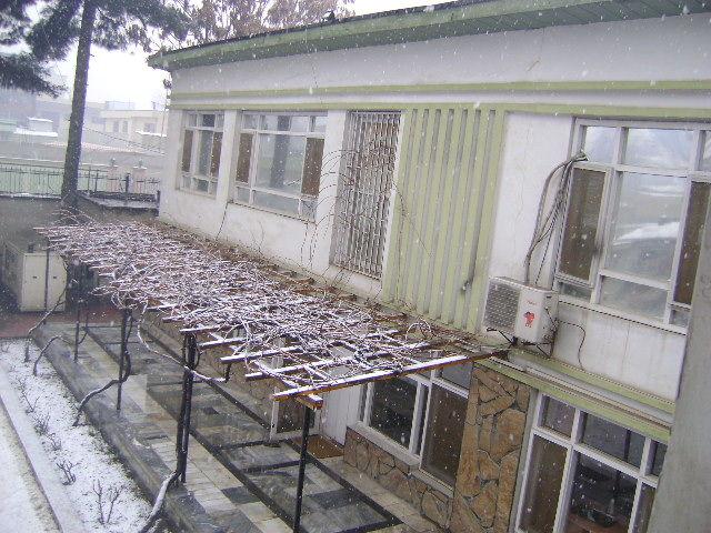 خانه، برف