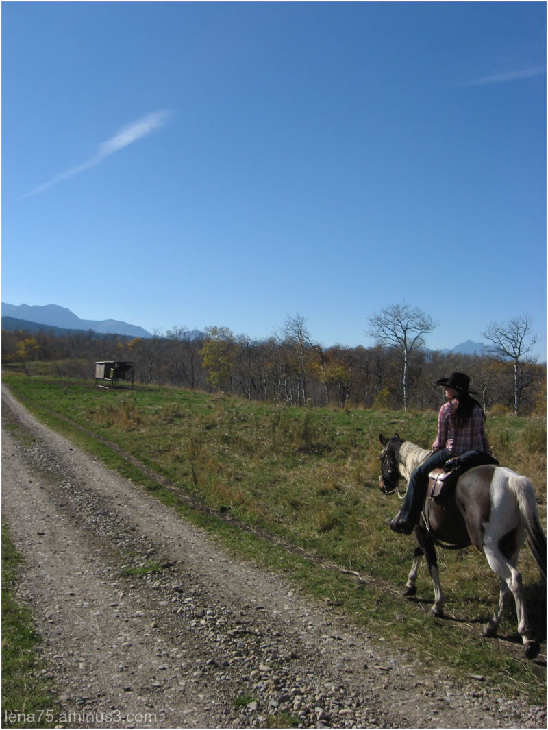 Horse-back ridding near the Rockies