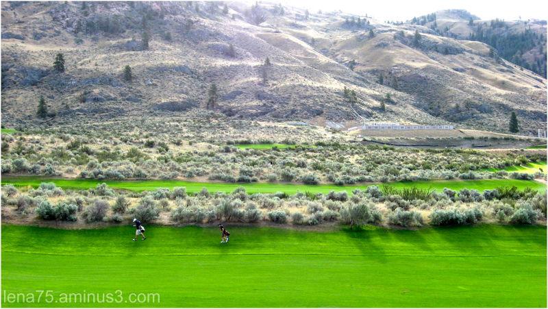 Golfing in the desert.