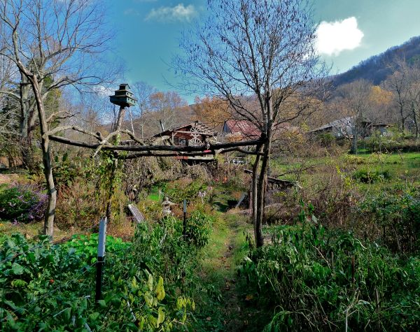 short mountain garden
