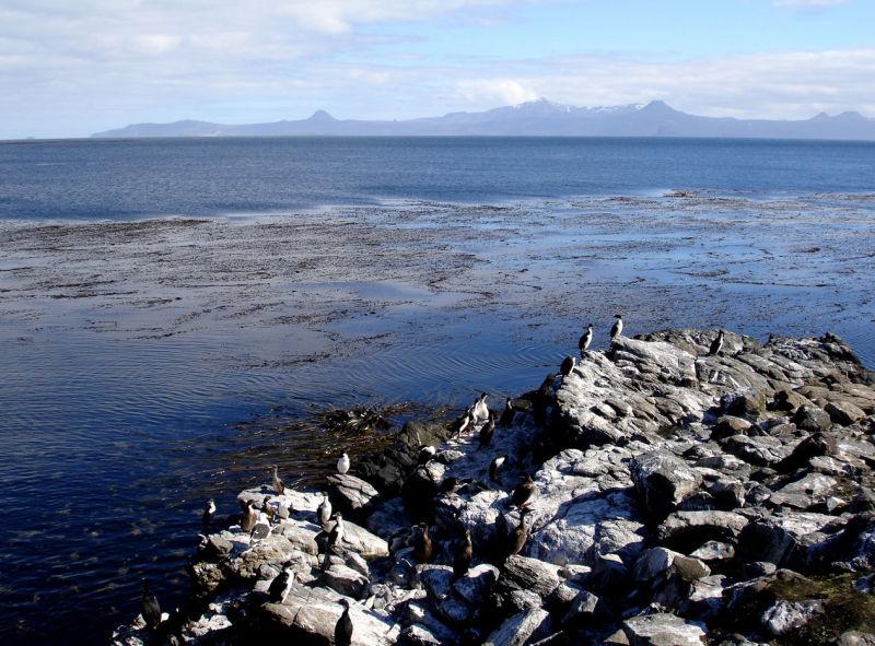 Morbihan Bay (Kerguelen Archipelago, Antarctica)