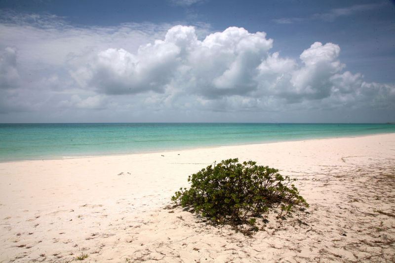 Ouvéa beach