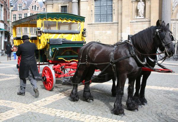 Une calèche d'Anvers