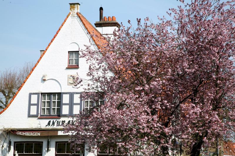 Une rue de Bruges