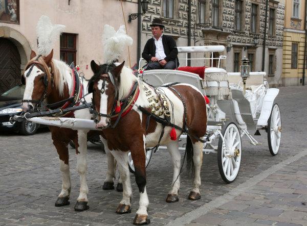 Une calèche de Cracovie