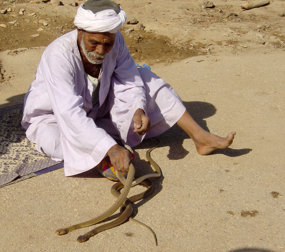 Un charmeur de serpents de Comb Ombo
