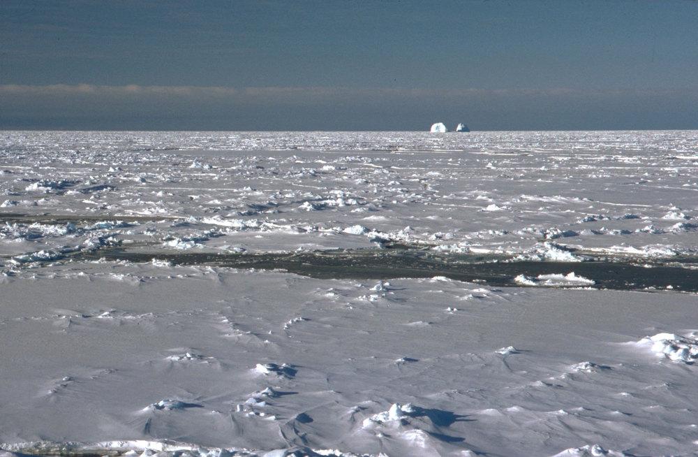 La banquise de la mer de Weddell