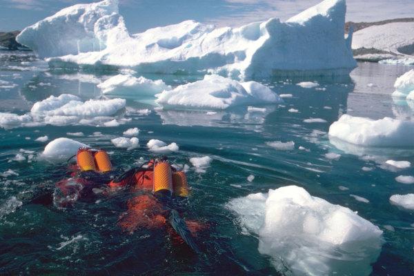 Des plongeurs en mission de prélèvements