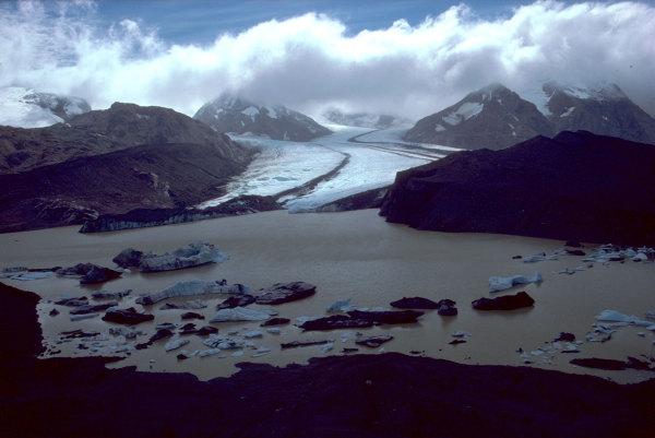 Le glacier Arago
