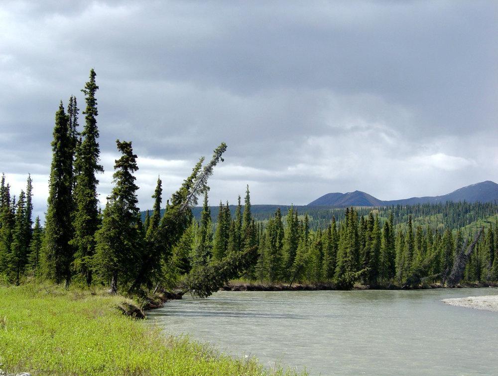 L'alaska profonde