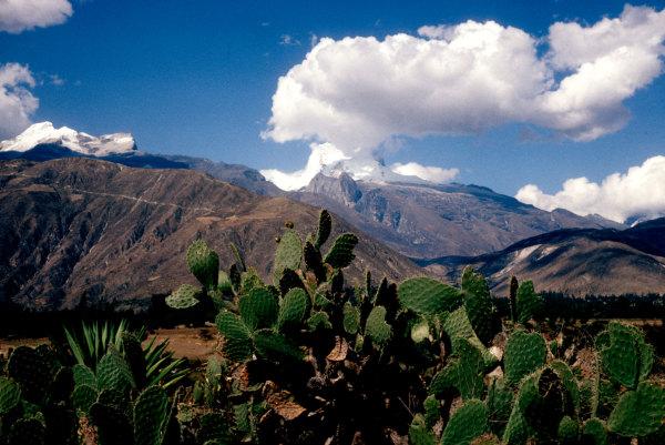 La cordilière péruviène