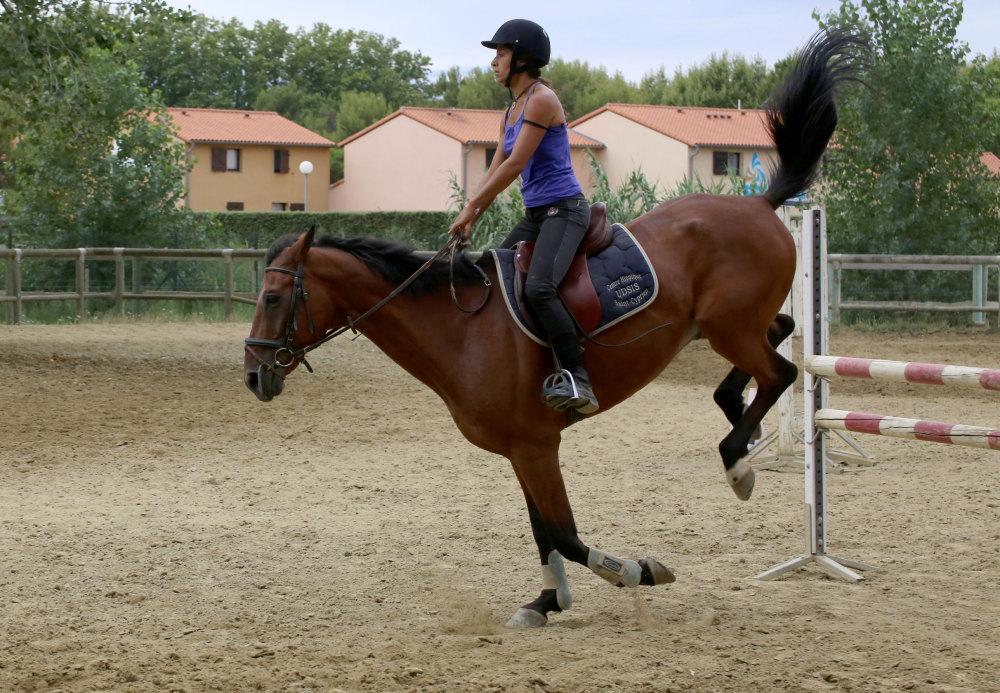 Le centre equestre de Saint Cyprien