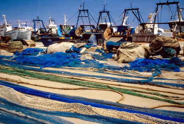 Port de pêche valencien