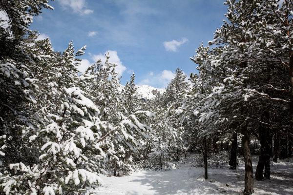 L'hiver en Ubaye