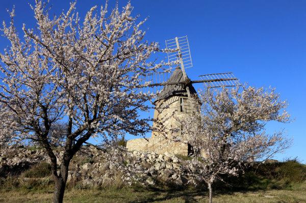 Le moulin de Villeneuve en Minervois