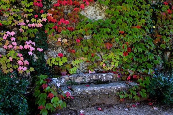 Le jardin de l'abbaye de Fontfroide