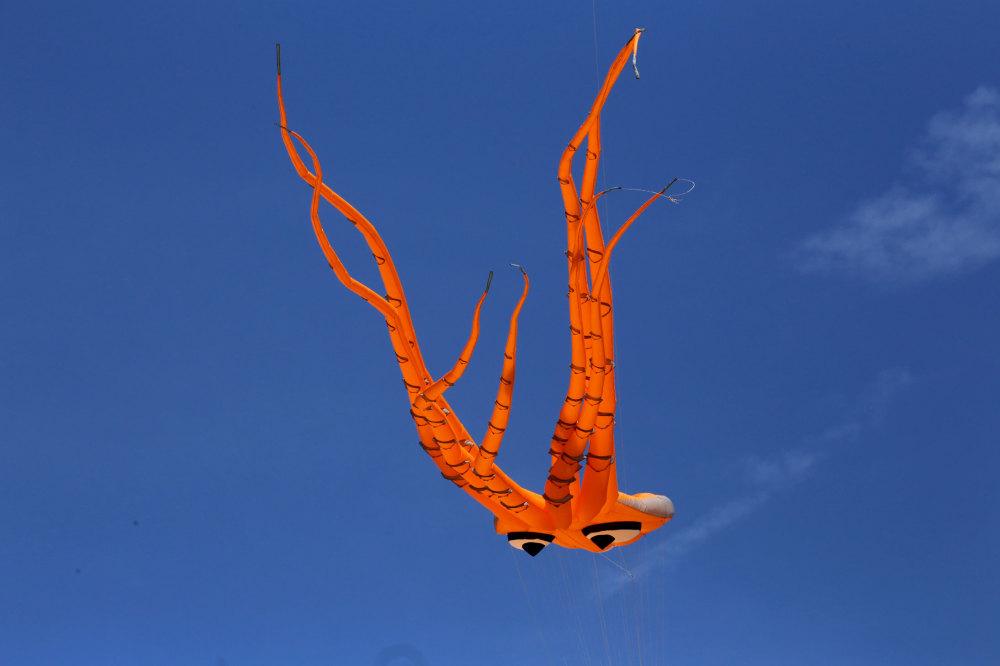 Festival du cerfs volant à Narbonne plage