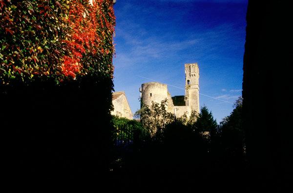 Chateau bourguignon