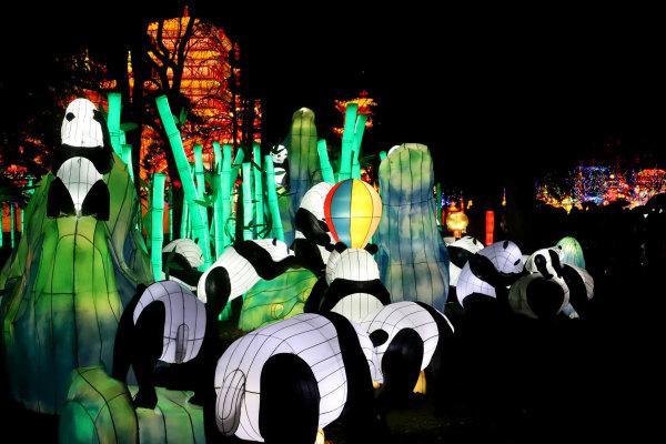 Festival des lanternes de Gaillac