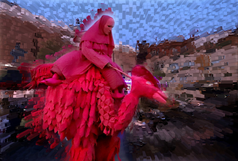 """Les jeudis de Perpignan """"Oiseaux Lux"""""""