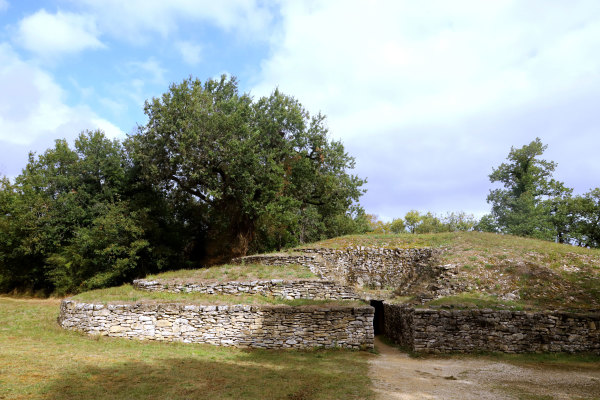 Un des tumulus de Bougon