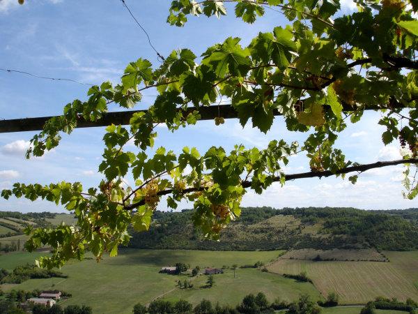Panorama depuis Cordes