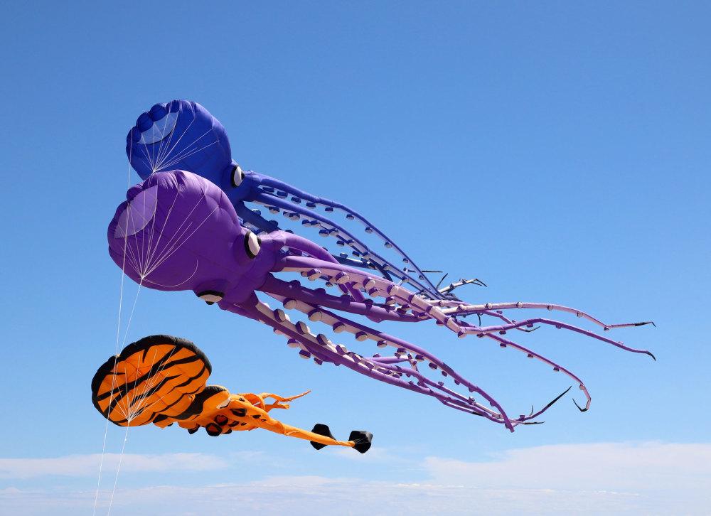 Les cerfs volants se Saint Cyprien