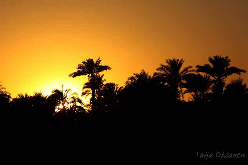 Sunset in Luxor