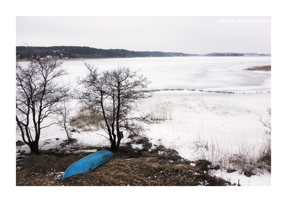 The sea is frozen
