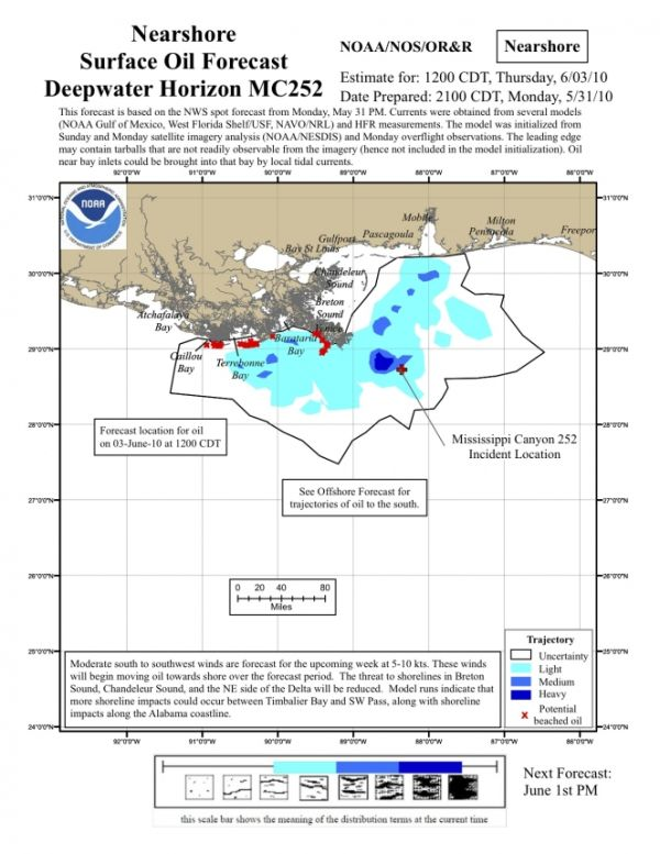 Pelicans: Nearshore surface oil forecast